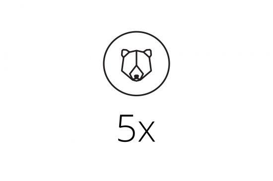 5x Brooch