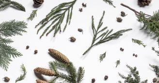 BeWooden - 5 Tipps für eine ruhige Weihnachtszeit