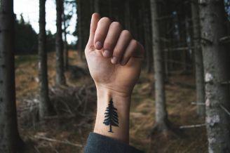 BeWooden - Nachhaltigkeit - 10 Wege, wie Du etwas für die Umwelt tun kannst