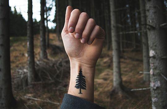 Aus Liebe zur Natur