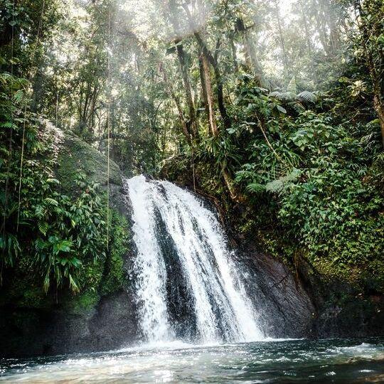 BeWooden - Für Wälder und Wasser