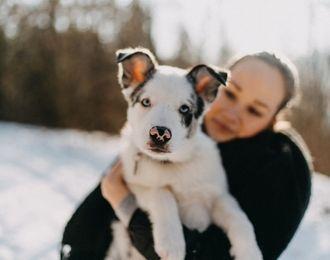 Geschenke für Hundeliebhaber